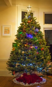 Christmas Tree Pests? Don't Panic!