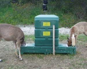 Four poster tick treatment system for deer