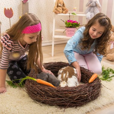 Getting a New Pet Rabbit? It Will Need a Rabbit Nest
