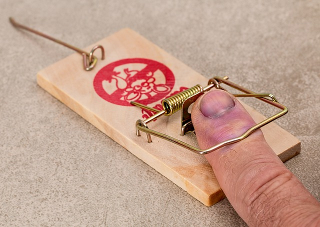 finger caught in mouse trap